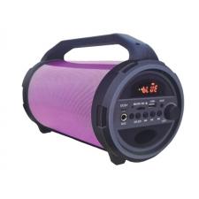 JVC BT Speaker