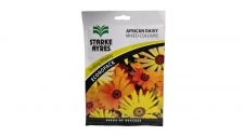 Seed African Daisy Mix