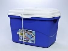 Addis Cooler Box 45l Coolcat
